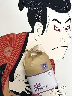 新之助com.jpg